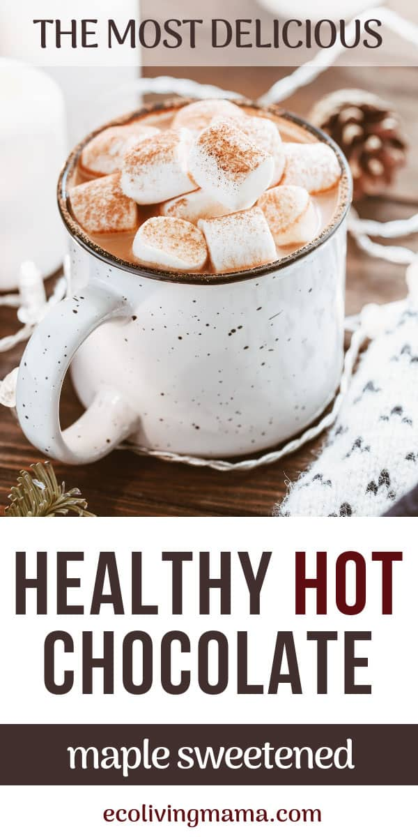 healthy, dairy-free hot chocolate recipe