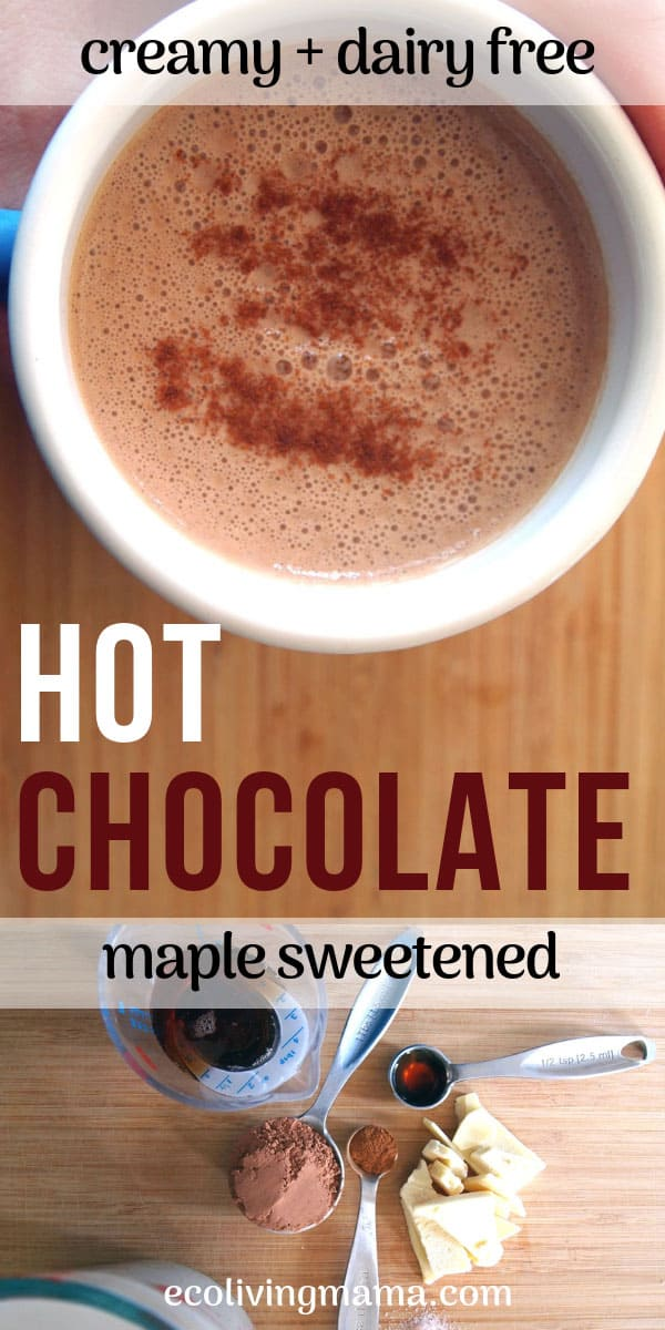 healthy dairy free hot chocolate recipe sweetened with maple syrup