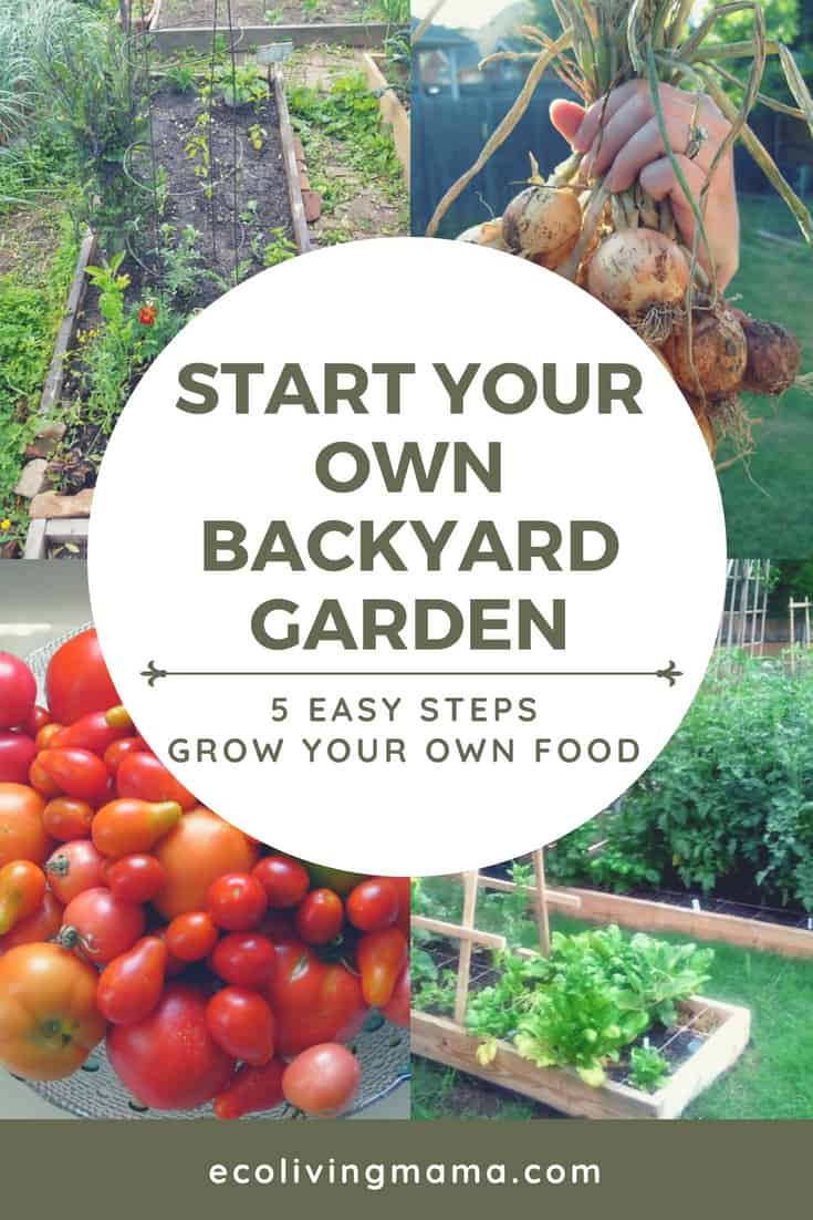 backyard garden, vegetable garden, grow your own, veggie garden, how to garden