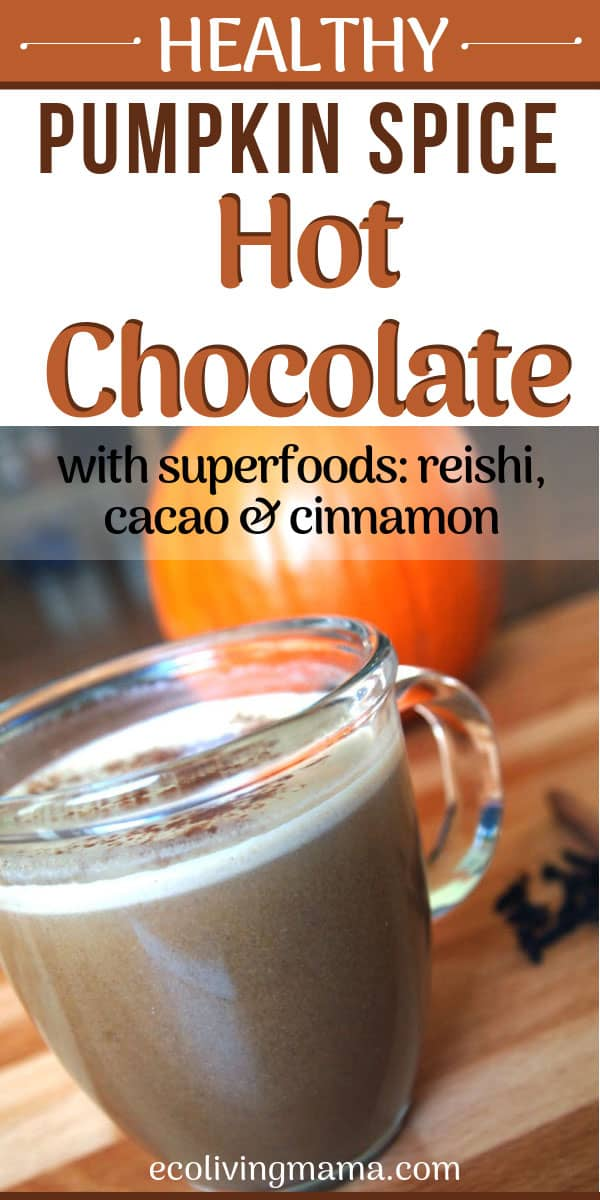 healthy pumkin spice hot chocolate with reishi