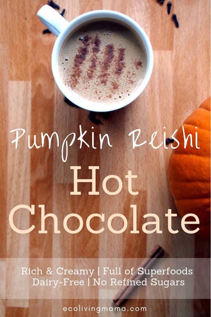 Superfood Pumpkin Reishi Hot Chocolate with cinnamon on top next to a pumpkin