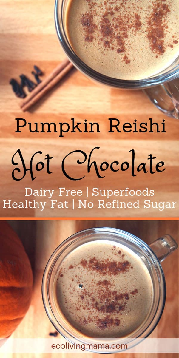 Healthy Pumpkin Reishi Hot Chocolate topped with cinnamon