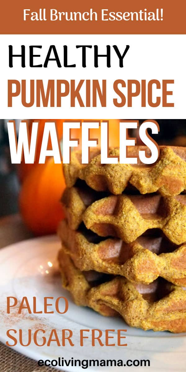 Healthy Paleo Pumpkin Spice Waffles