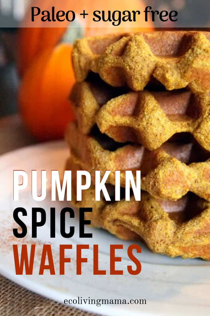 Paleo Pumpkin Spice Waffles