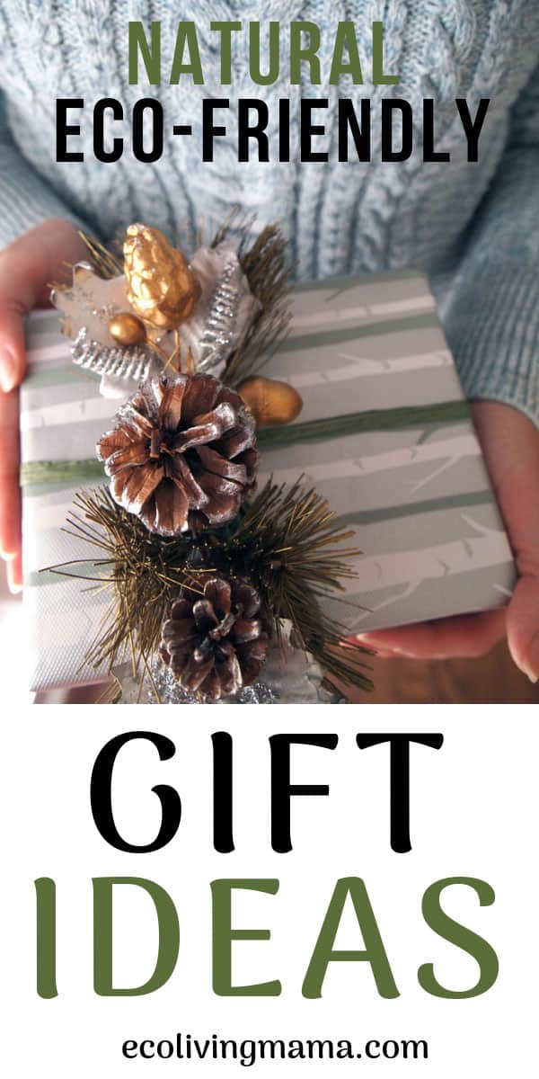 natural eco friendly gift ideas gift guide