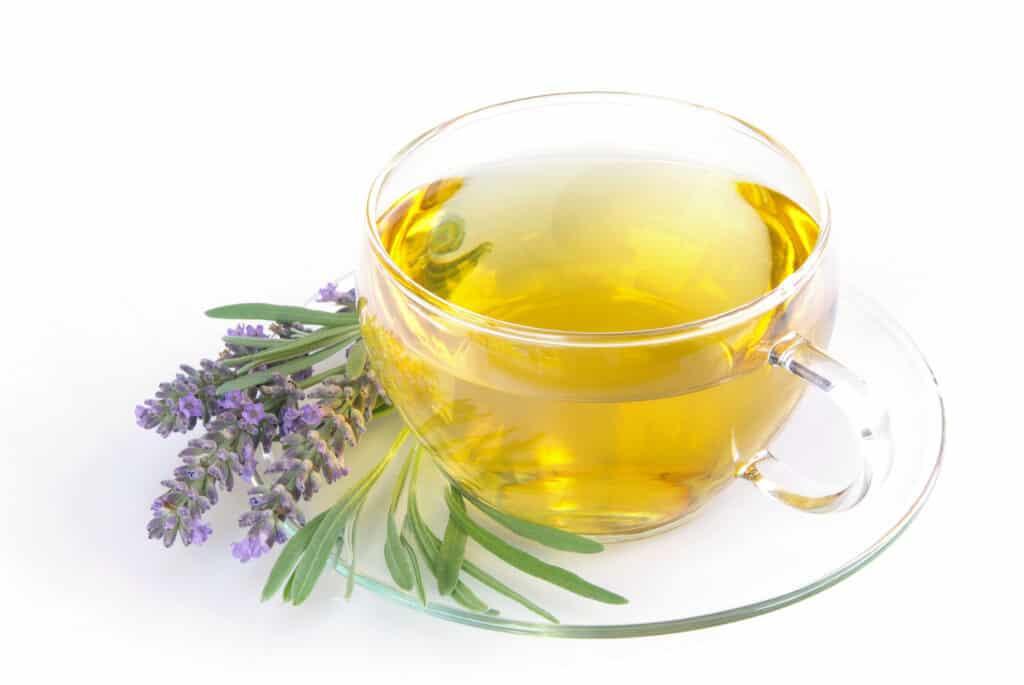 cup of lavender tea
